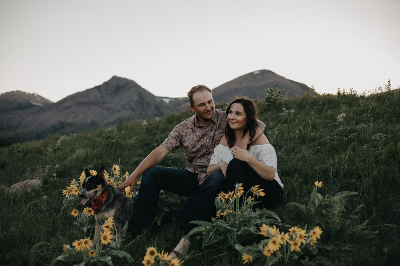 Alberta Mountain Engagement
